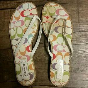 Coach Dorra Multi-colored Sandal